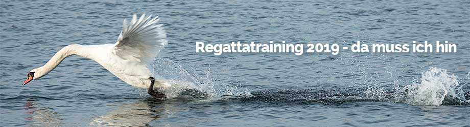 Yachtcharter Ostsee real sailing regattatraining